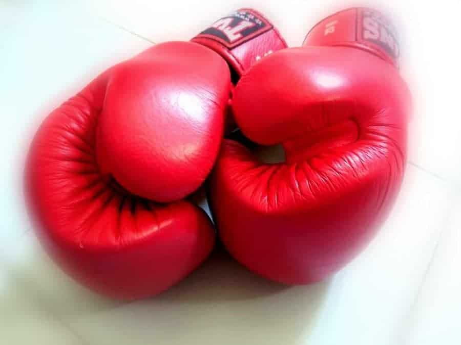 Red Team (muay thai gloves) - consulting